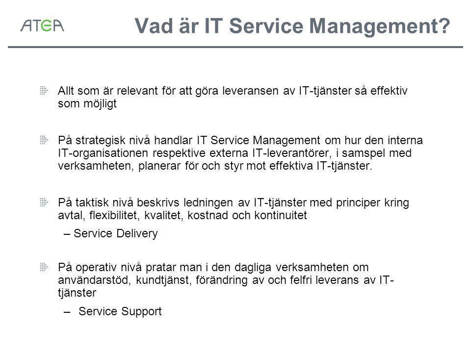 Vad är IT Service Management.