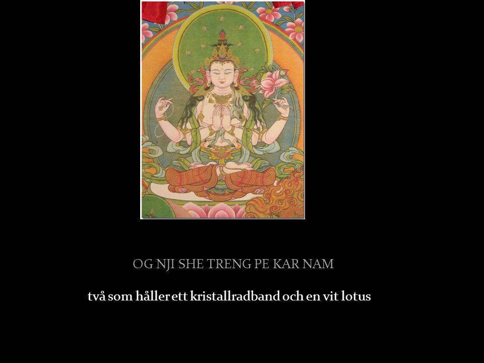 TJAG SHII DANGPO TAL DJAR DSE Han har fyra händer, två med handflatorna samman i bön,