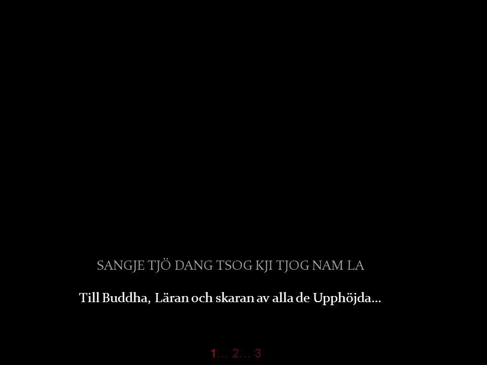 SANGJE TJÖ DANG TSOG KJI TJOG NAM LA Till Buddha, Läran och skaran av alla de Upphöjda… 1… 2… 3
