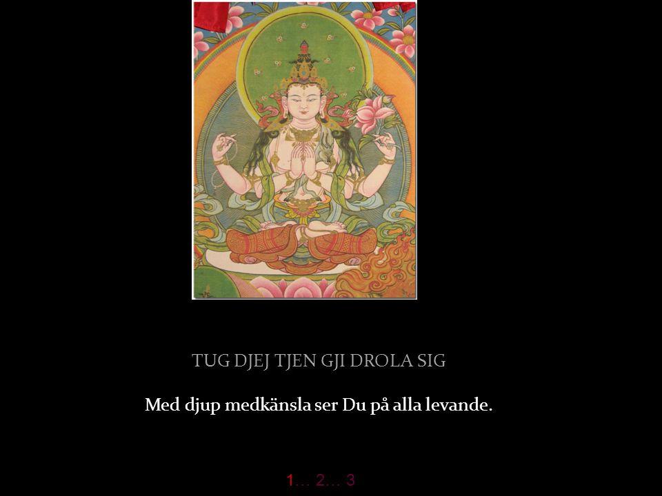 DSOG SANGJE KJI U LA GJEN den fulländade Buddha kröner Ditt huvud. 1… 2… 3
