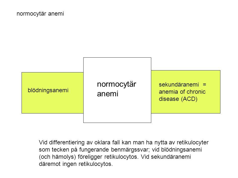 normocytär anemi blödningsanemi sekundäranemi = anemia of chronic disease (ACD) Vid differentiering av oklara fall kan man ha nytta av retikulocyter s