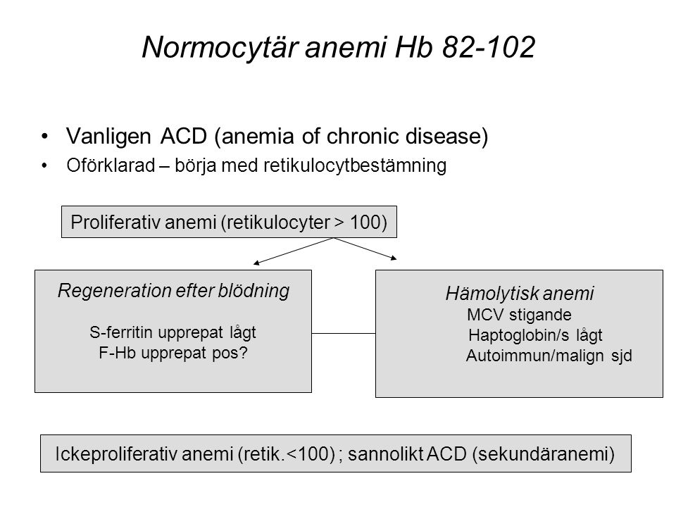 Normocytär anemi Hb 82-102 •Vanligen ACD (anemia of chronic disease) •Oförklarad – börja med retikulocytbestämning Proliferativ anemi (retikulocyter >