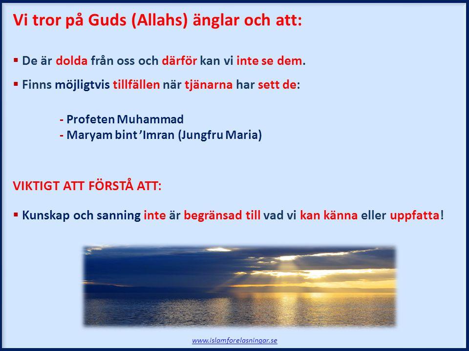Vi tror på Guds (Allahs) änglar och att:  De är dolda från oss och därför kan vi inte se dem.  Finns möjligtvis tillfällen när tjänarna har sett de: