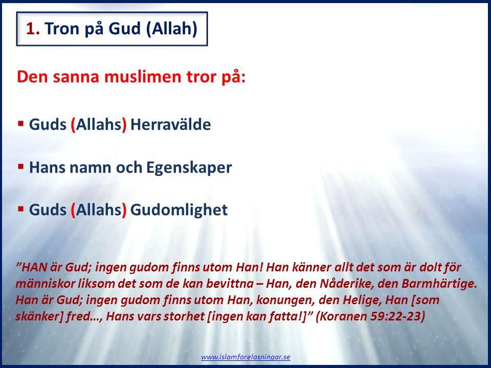 """Den sanna muslimen tror på:  Guds (Allahs) Herravälde  Hans namn och Egenskaper  Guds (Allahs) Gudomlighet """"HAN är Gud; ingen gudom finns utom Han!"""