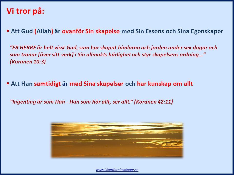 VI HAR sänt dig [Muhammad, inte bara till ditt eget folk utan] till hela mänskligheten, som förkunnare av ett glatt budskap om hopp och som varnare, men de flesta människor är omedvetna [om detta]. (Koranen 34:28) Budskapet www.islamforelasningar.se Vi muslimer tror på att:  Alla profeter förkunnade samma gudomliga budskap  Den Islam som förkunnades tidigare innehöll inte samma lagar  Islam är ett sinnestillstånd och ett handlingsprogram Skillnaden på den siste Profeten och de övriga: