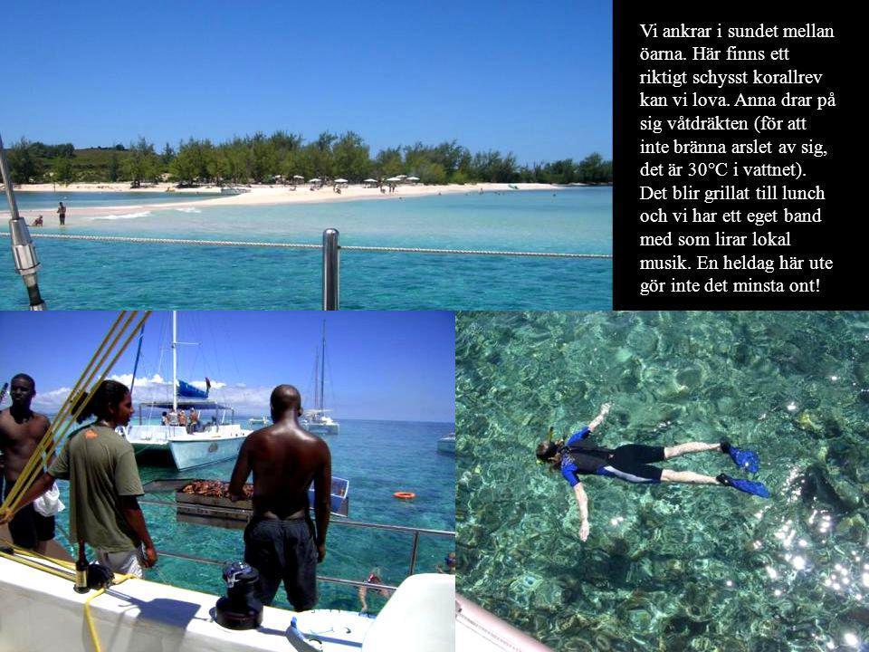 Vi ankrar i sundet mellan öarna. Här finns ett riktigt schysst korallrev kan vi lova. Anna drar på sig våtdräkten (för att inte bränna arslet av sig,