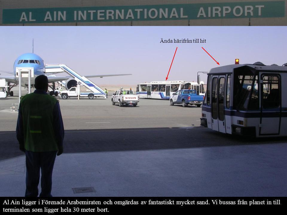 Al Ain ligger i Förenade Arabemiraten och omgärdas av fantastiskt mycket sand. Vi bussas från planet in till terminalen som ligger hela 30 meter bort.