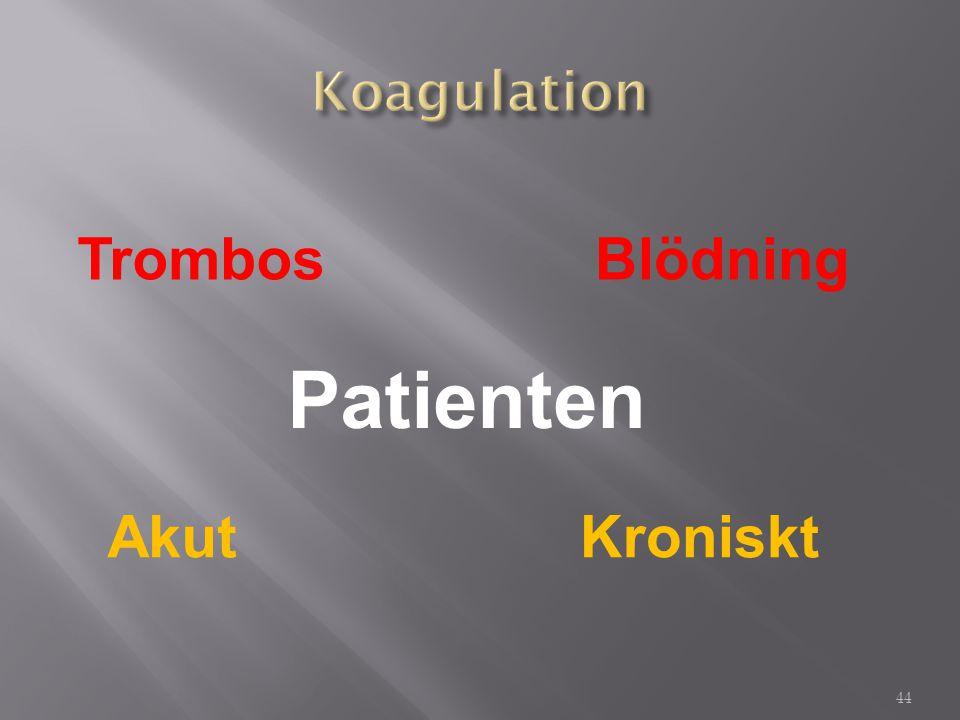 TrombosBlödning AkutKroniskt Patienten 44