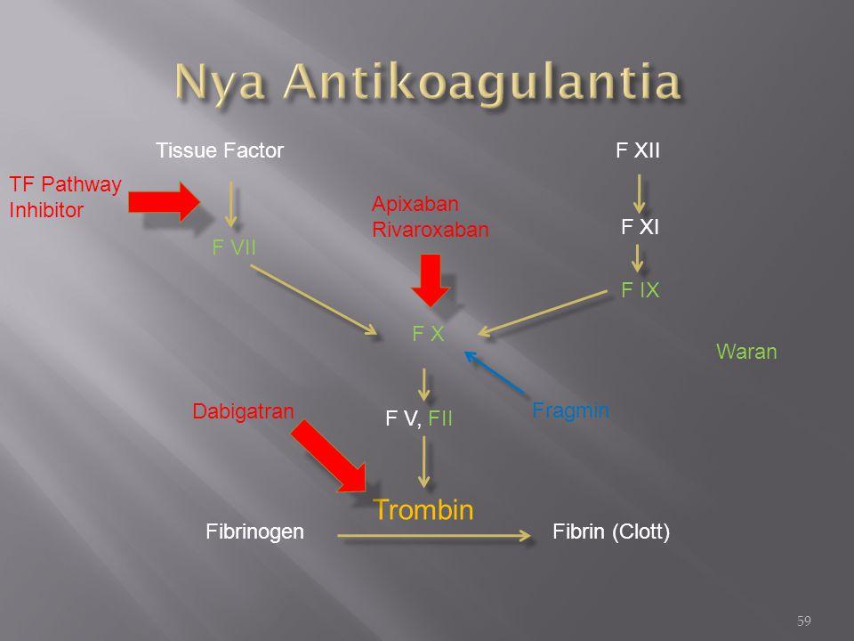 59 Tissue Factor F VII F X F XII F XI F IX Apixaban Rivaroxaban F V, FII Trombin FibrinogenFibrin (Clott) Dabigatran TF Pathway Inhibitor Fragmin Wara