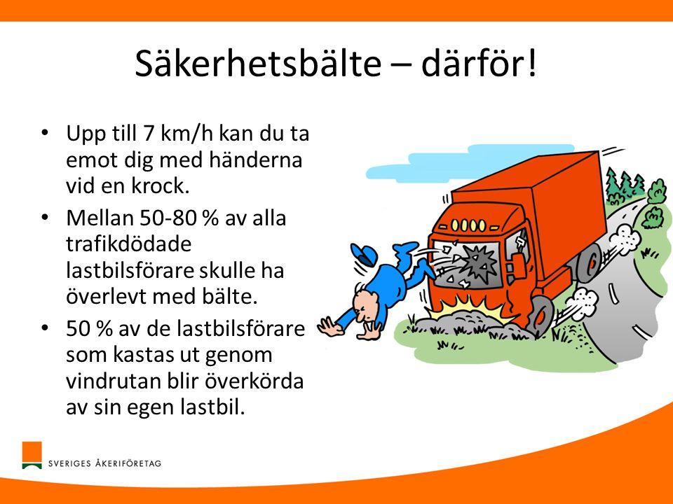 Säkerhetsbälte – därför! • Upp till 7 km/h kan du ta emot dig med händerna vid en krock. • Mellan 50-80 % av alla trafikdödade lastbilsförare skulle h