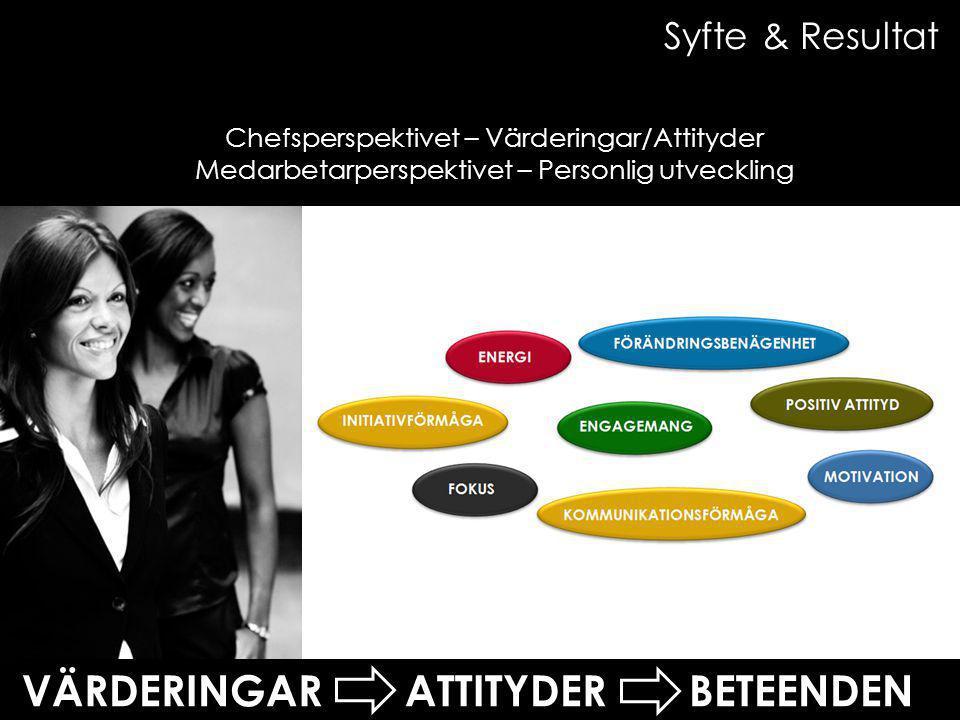 Chefsperspektivet – Värderingar/Attityder Medarbetarperspektivet – Personlig utveckling VÄRDERINGAR ATTITYDER BETEENDEN Syfte & Resultat