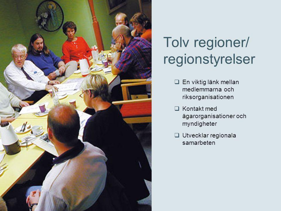 Tolv regioner/ regionstyrelser  En viktig länk mellan medlemmarna och riksorganisationen  Kontakt med ägarorganisationer och myndigheter  Utvecklar