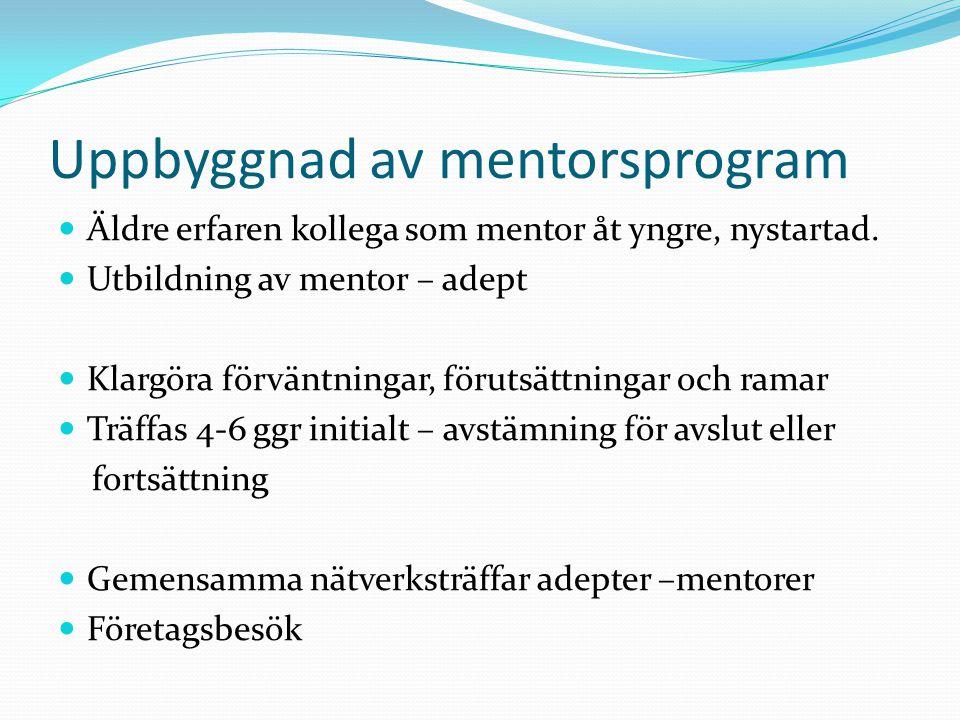 Uppbyggnad av mentorsprogram  Äldre erfaren kollega som mentor åt yngre, nystartad.