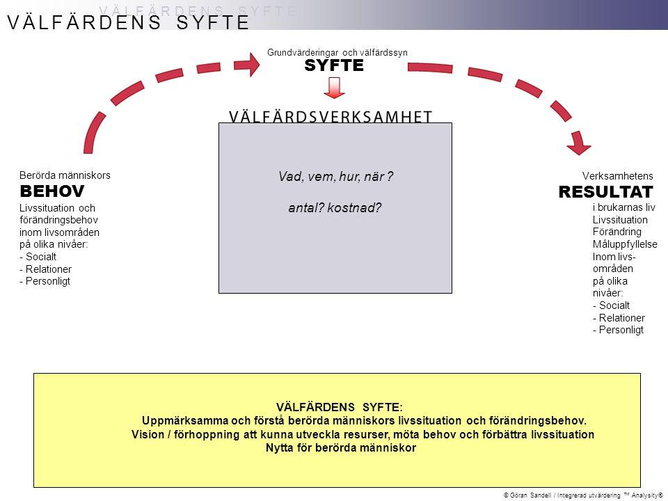 © Göran Sandell / Integrerad utvärdering ™ Analysity® TID, INNEHÅLL OCH LIVSOMRÅDEN PÅ NIVÅER MODELLENS STRUKTUR MODELLENS STRUKTUR: Tvärstruktur Med livsområden inom huvudnivåer Livssituation / Förändringsbehov / Förändring / Måluppfyllelse undersöks inom olika Livsområden - på tre Huvudnivåer SOCIAL SITUATION - Strukturell nivå Sysselsättning, Ekonomi, Boende, Skola/barnomsorg etc RELATIONER - Interpersonell nivå Föräldrar, Barn, Parrelation, Nätverk etc PERSONLIGT – Biopsykisk individnivå Fysisk o psykisk hälsa, Självuppfattning, Beroende etc BEHOV NYTTA VÄLFÄRDSVERKSAMHET RESULTAT Tid EFTER insatser FÖRE insatser Uppf 1 Uppf 2 Uppf 3 etc pågående insatser UNDER TIDEN Tid = vid START