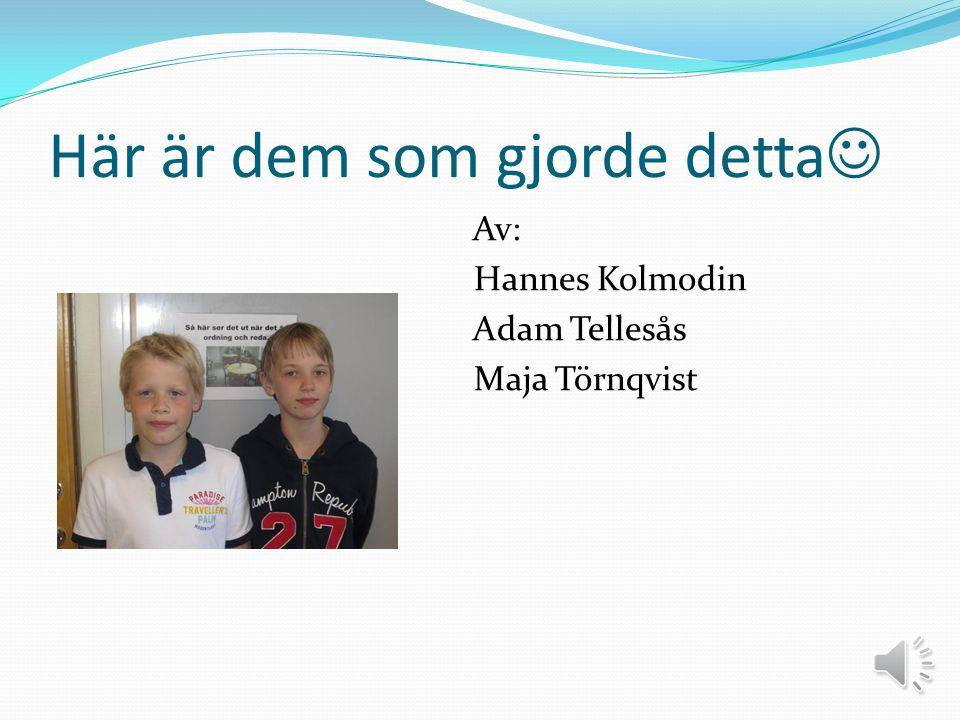 Här är dem som gjorde detta  Av: Hannes Kolmodin Adam Tellesås Maja Törnqvist
