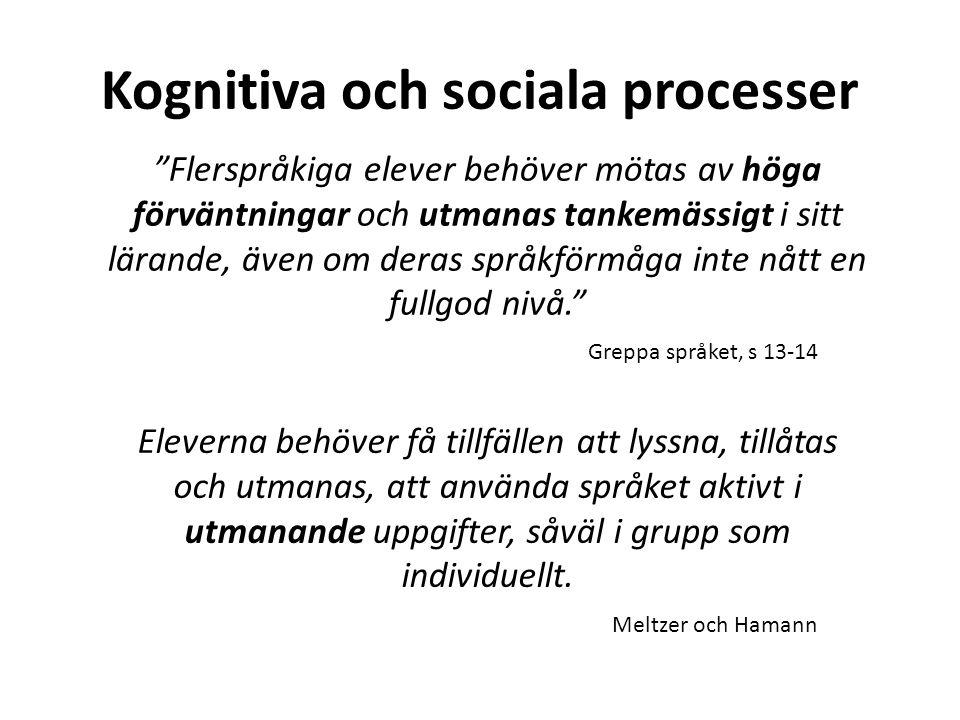 """Kognitiva och sociala processer """"Flerspråkiga elever behöver mötas av höga förväntningar och utmanas tankemässigt i sitt lärande, även om deras språkf"""