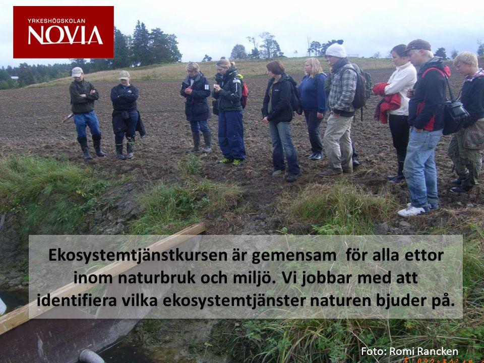 Ekosystemtjänstkursen är gemensam för alla ettor inom naturbruk och miljö.