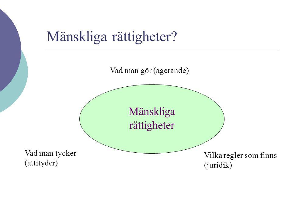 Jag tror att de har med FN att göra, jag tror att de är bra och jag tror att Sverige är bra på dem (sammanfattning av läget) Den generella kunskapsnivån om mänskliga rättigheter i svenska myndigheter?