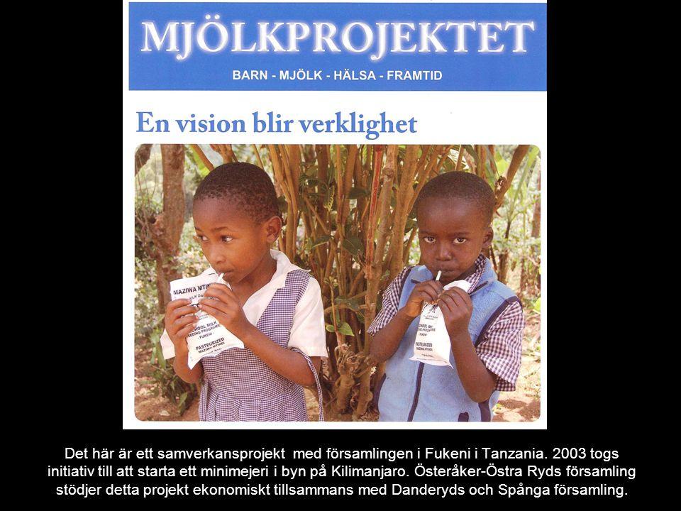Det här är ett samverkansprojekt med församlingen i Fukeni i Tanzania. 2003 togs initiativ till att starta ett minimejeri i byn på Kilimanjaro. Österå