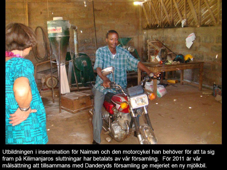 Utbildningen i insemination för Naiman och den motorcykel han behöver för att ta sig fram på Kilimanjaros sluttningar har betalats av vår församling.