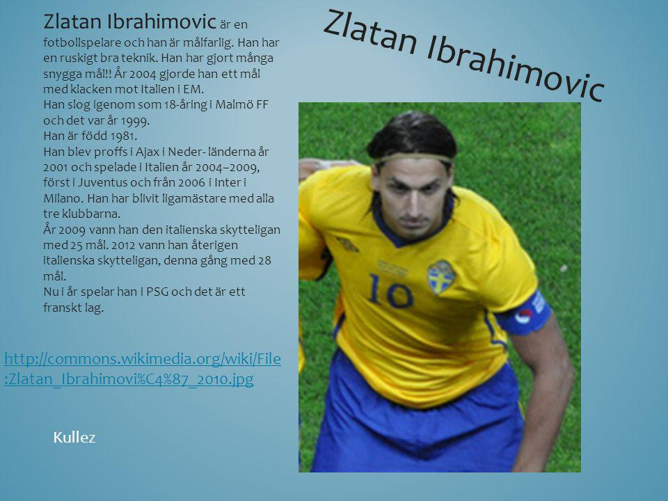 Zlatan Ibrahimovic är en fotbollspelare och han är målfarlig. Han har en ruskigt bra teknik. Han har gjort många snygga mål!! År 2004 gjorde han ett m