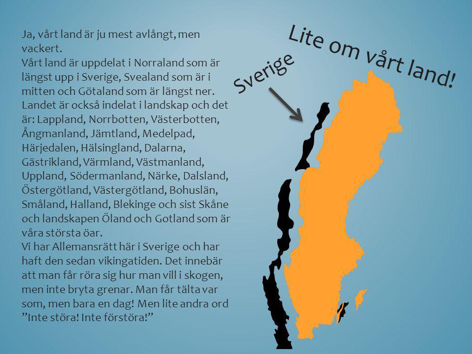 Lite om vårt land! Ja, vårt land är ju mest avlångt, men vackert. Vårt land är uppdelat i Norraland som är längst upp i Sverige, Svealand som är i mit