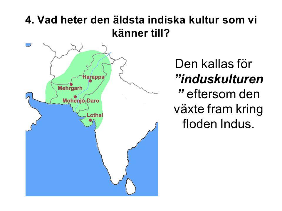 """4. Vad heter den äldsta indiska kultur som vi känner till? Den kallas för """"induskulturen """" eftersom den växte fram kring floden Indus."""