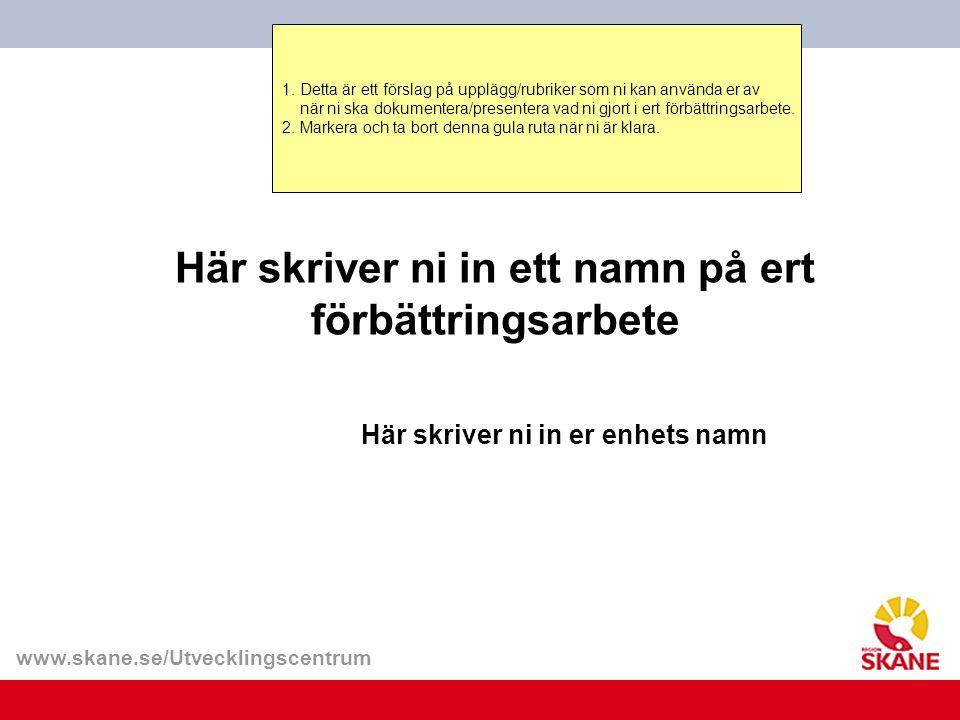 www.skane.se/Utvecklingscentrum 1. Detta är ett förslag på upplägg/rubriker som ni kan använda er av när ni ska dokumentera/presentera vad ni gjort i