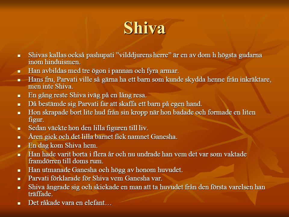 Vishnu VVVVishnu upprätthåller och bevarar skapelsen.