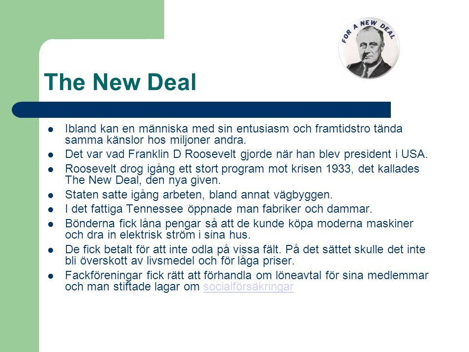 The New Deal  Ibland kan en människa med sin entusiasm och framtidstro tända samma känslor hos miljoner andra.  Det var vad Franklin D Roosevelt gjo