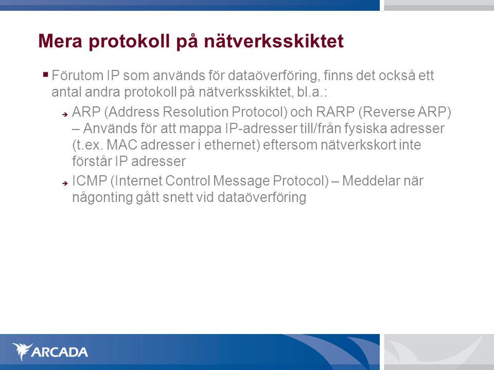 Mera protokoll på nätverksskiktet  Förutom IP som används för dataöverföring, finns det också ett antal andra protokoll på nätverksskiktet, bl.a.: 