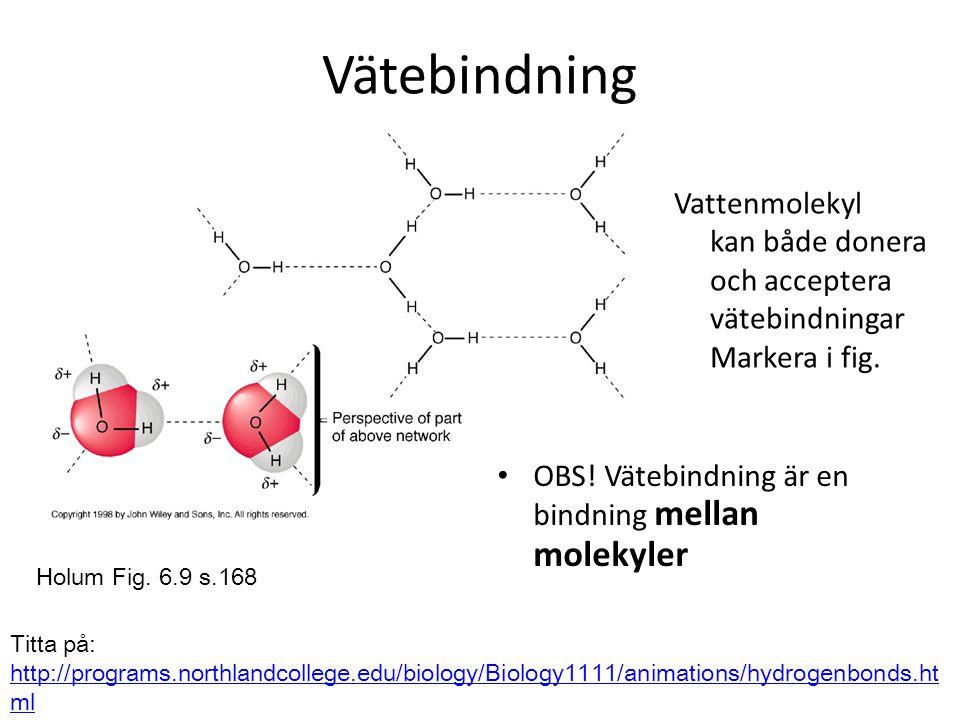 Vätebindning • OBS! Vätebindning är en bindning mellan molekyler Holum Fig. 6.9 s.168 Titta på: http://programs.northlandcollege.edu/biology/Biology11