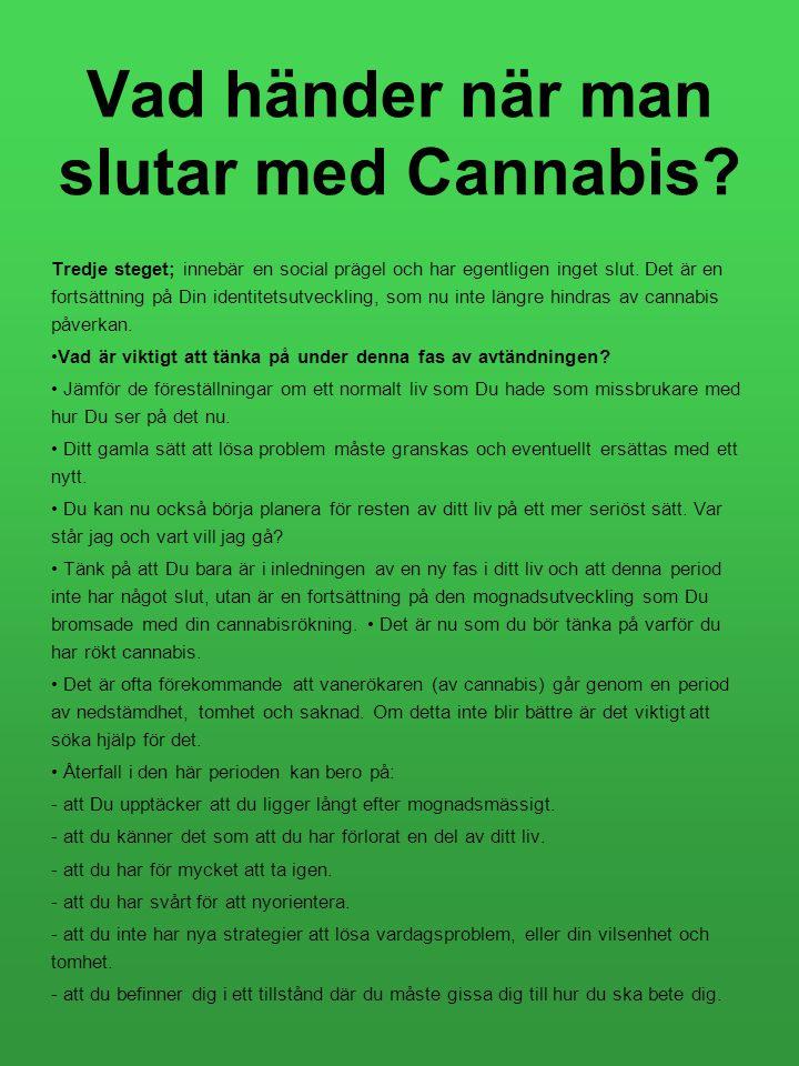 Vad händer när man slutar med Cannabis? Tredje steget; innebär en social prägel och har egentligen inget slut. Det är en fortsättning på Din identitet