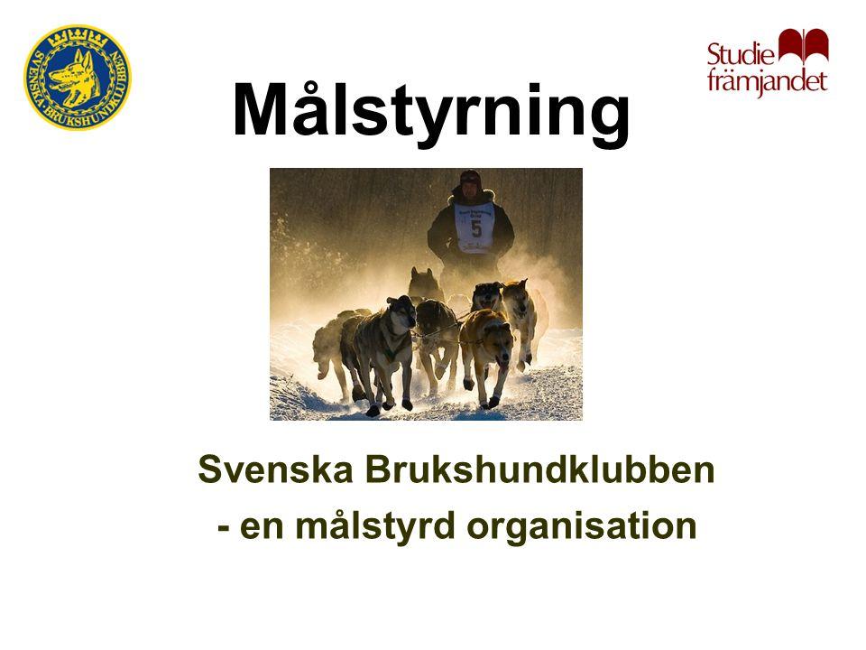 Målstyrning Svenska Brukshundklubben - en målstyrd organisation