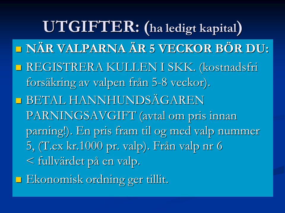 UTGIFTER: ( ha ledigt kapital )  NÄR VALPARNA ÄR 5 VECKOR BÖR DU:  REGISTRERA KULLEN I SKK. (kostnadsfri forsäkring av valpen från 5-8 veckor).  BE