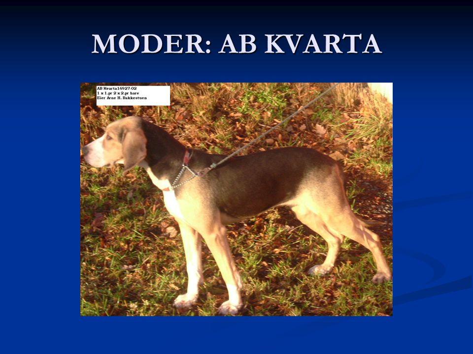 MODER: AB KVARTA