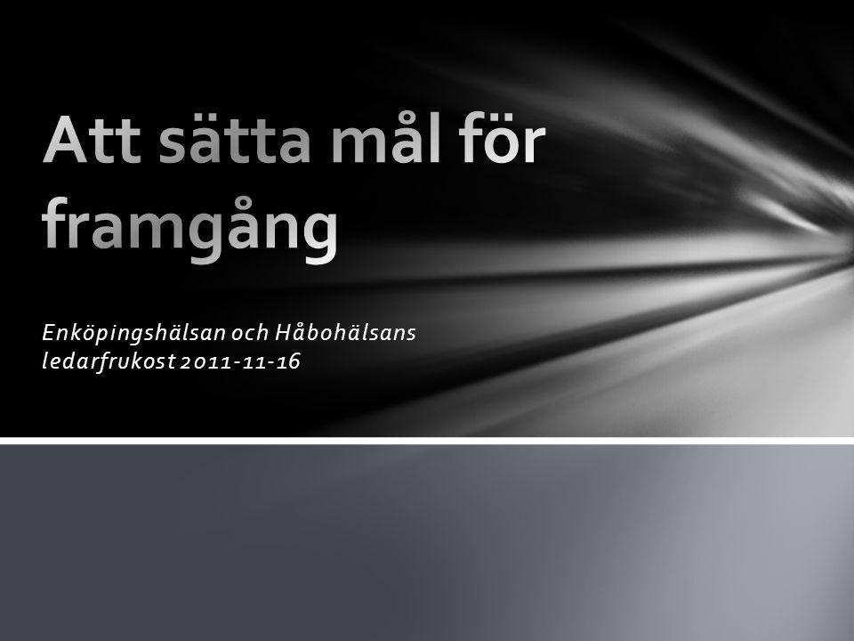 Enköpingshälsan och Håbohälsans ledarfrukost 2011-11-16
