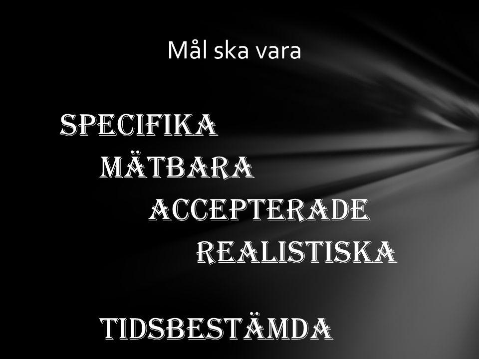 Specifika Mätbara Accepterade Realistiska Tidsbestämda Mål ska vara