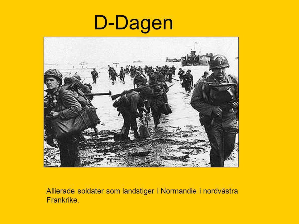 D-Dagen Allierade soldater som landstiger i Normandie i nordvästra Frankrike.