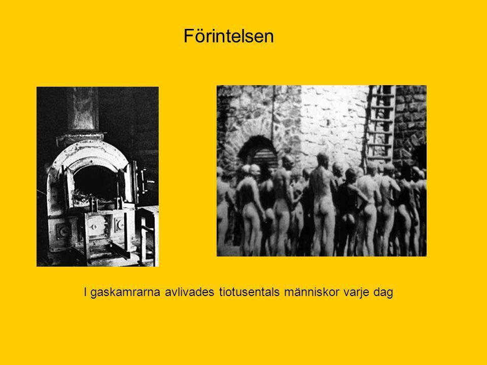 Förintelsen I gaskamrarna avlivades tiotusentals människor varje dag