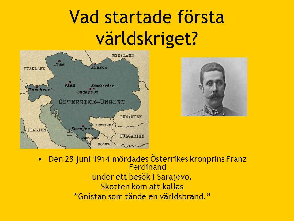 Vad startade första världskriget.