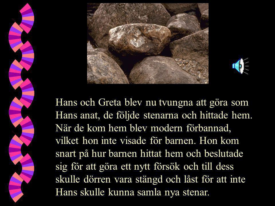 Hans och Greta blev nu tvungna att göra som Hans anat, de följde stenarna och hittade hem. När de kom hem blev modern förbannad, vilket hon inte visad
