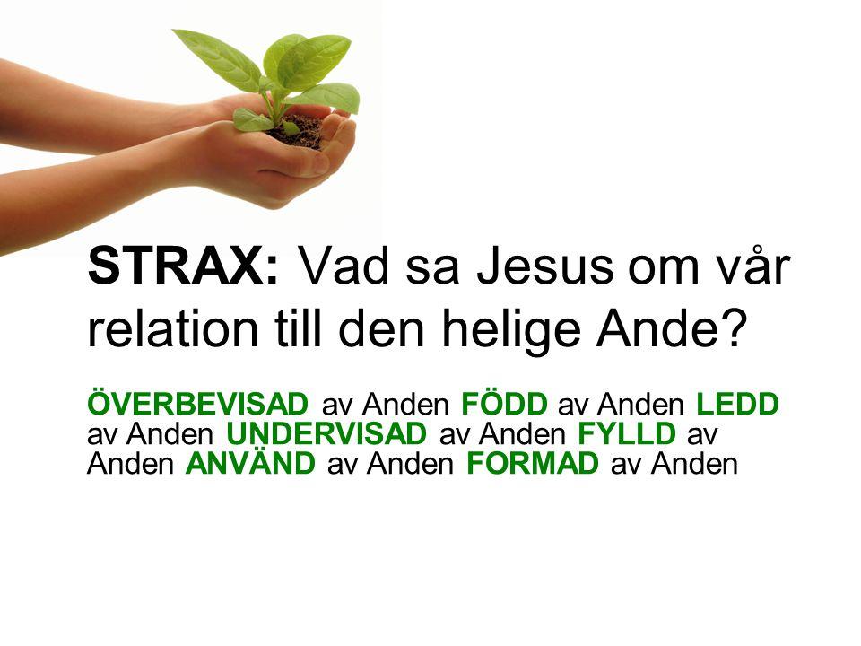 STRAX: Vad sa Jesus om vår relation till den helige Ande.