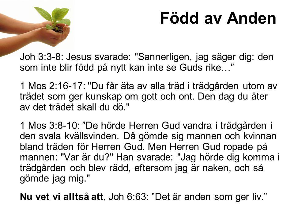 Född av Anden Joh 3:3-8: Jesus svarade: Sannerligen, jag säger dig: den som inte blir född på nytt kan inte se Guds rike… 1 Mos 2:16-17: Du får äta av alla träd i trädgården utom av trädet som ger kunskap om gott och ont.
