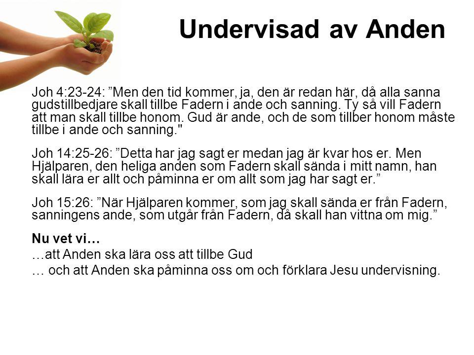Undervisad av Anden Joh 4:23-24: Men den tid kommer, ja, den är redan här, då alla sanna gudstillbedjare skall tillbe Fadern i ande och sanning.