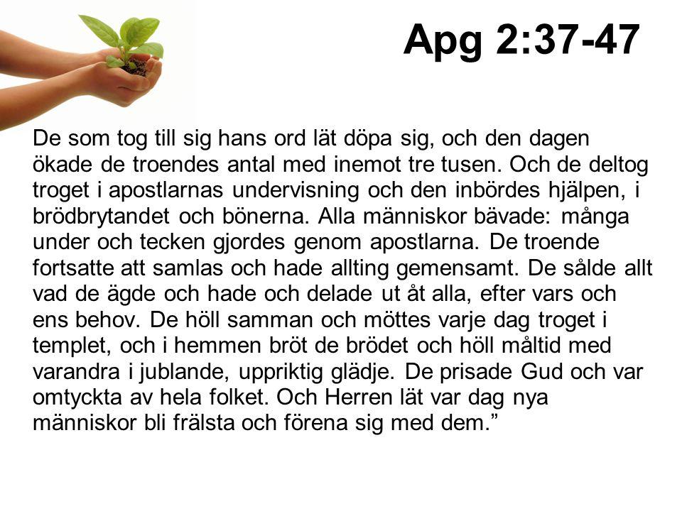 Apg 2:37-47 De som tog till sig hans ord lät döpa sig, och den dagen ökade de troendes antal med inemot tre tusen.