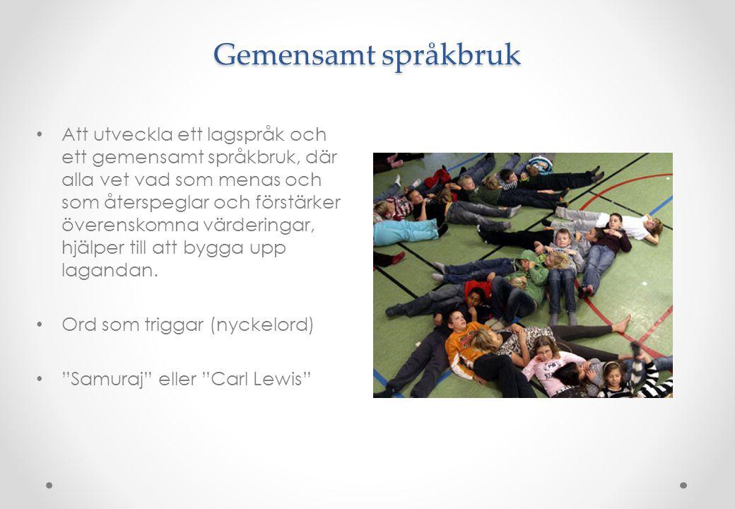 Gemensamt språkbruk • Att utveckla ett lagspråk och ett gemensamt språkbruk, där alla vet vad som menas och som återspeglar och förstärker överenskomn