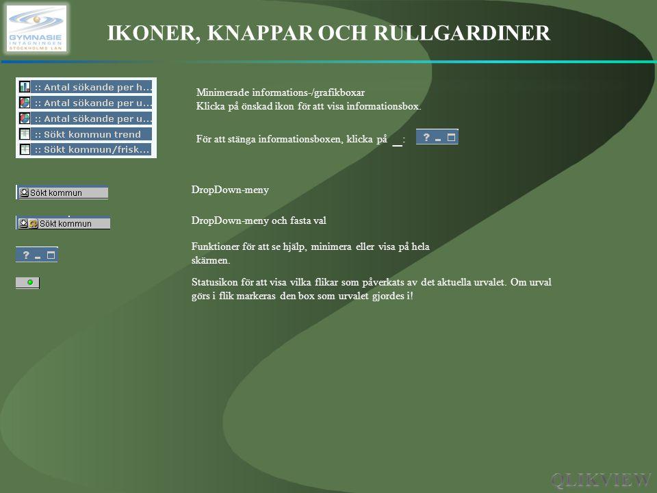 IKONER, KNAPPAR OCH RULLGARDINER Minimerade informations-/grafikboxar Klicka på önskad ikon för att visa informationsbox. För att stänga informationsb