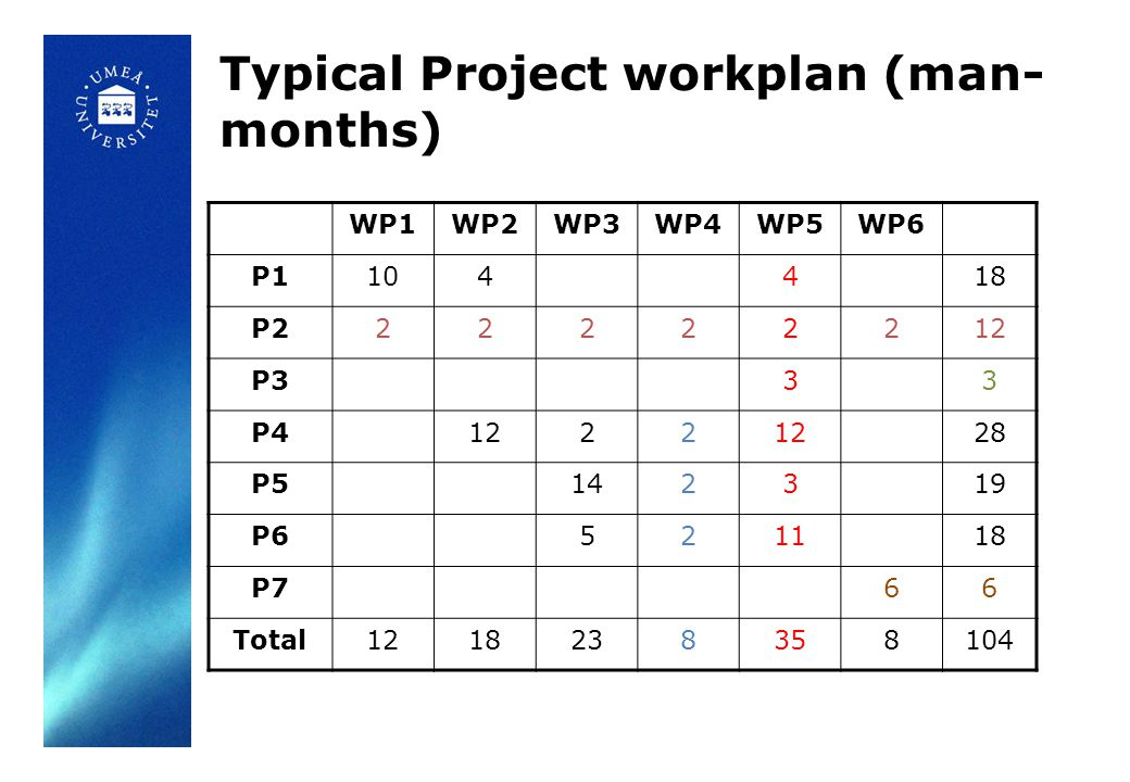 Typical Project workplan (man- months) WP1WP2WP3WP4WP5WP6 P1104418 P222222212 P333 P41222 28 P5142319 P6521118 P766 Total1218238358104