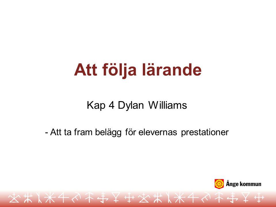 Att följa lärande Kap 4 Dylan Williams - Att ta fram belägg för elevernas prestationer